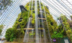 3 khu vực tham quan khu vườn Gardens By The Bay Singapore