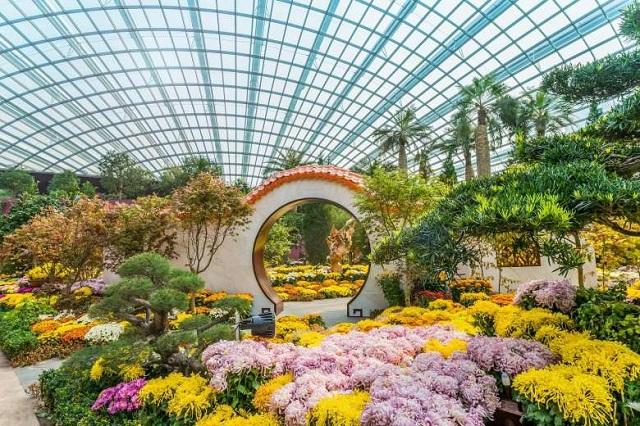 Vườn hoa được trưng bày với chủ đề thay đổi linh hoạt theo mùa