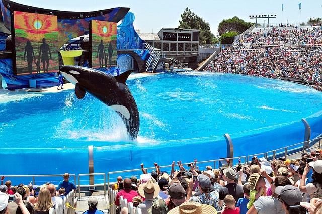 Bật mí những khu vui chơi giải trí tốt nhất ở San Diego
