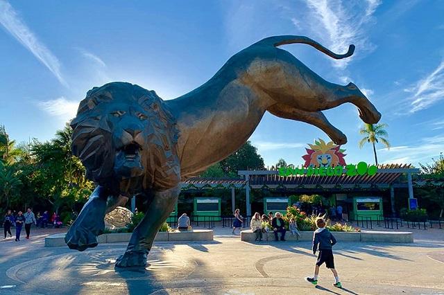 San Diego Zoo là một địa điểm tham quan thú vị mà bạn không nên bỏ lỡ