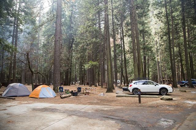Upper Pines Campground là khu cắm trại lớn nhất trong ba khu cắm trại ở Thung lũng Yosemite